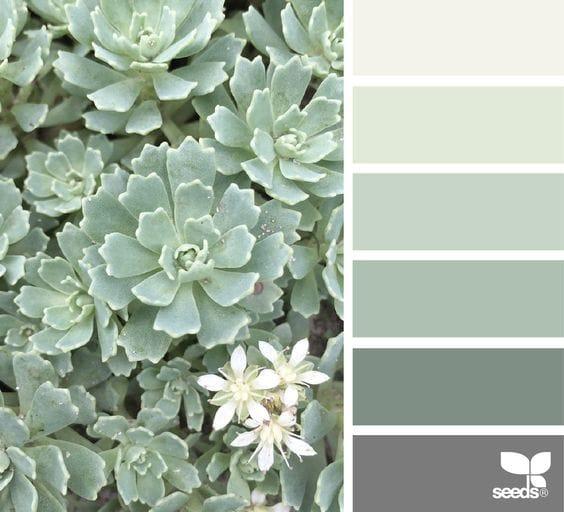 Dusty-Green-groene-krijtverf-grijze-krijtverf-krijtverf-kopen-krijtverf-bestellen-krijtverf-kleuren-krijtverf-aanbrengen-krijtverf-muur-kleur-van-de-week-1