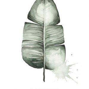 Botanische-posters-kaarten-botanisch-industrieel-interieur-Leo_La_Douce_edition_summer_18-25