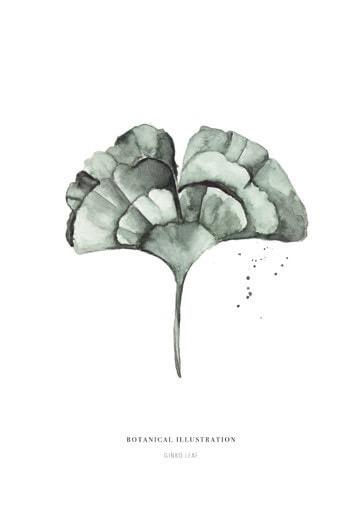 Botanische-posters-kaarten-botanisch-industrieel-interieur-Leo_La_Douce_edition_summer_18-2