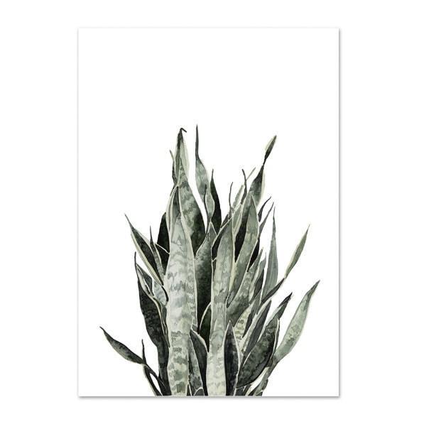 Botanische-posters-kaarten-botanisch-industrieel-interieur-Leo_La_Douce_edition_summer_18-3