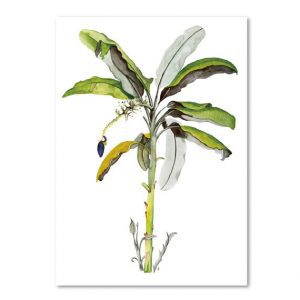 Botanische-posters-kaarten-botanisch-industrieel-interieur-Leo_La_Douce_edition_summer_18-13