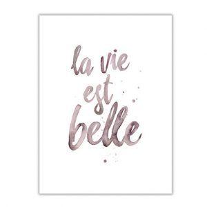Kaart-tekst-quote-Leo_La_Douce_edition_summer_18-44-La-vie-est-Belle