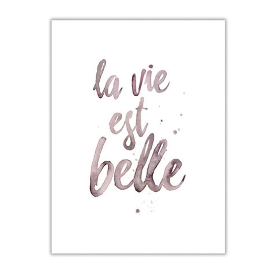 Kaart-tekst-quote-Leo_La_Douce_edition_summer_18-44-La-vie-est-Belle