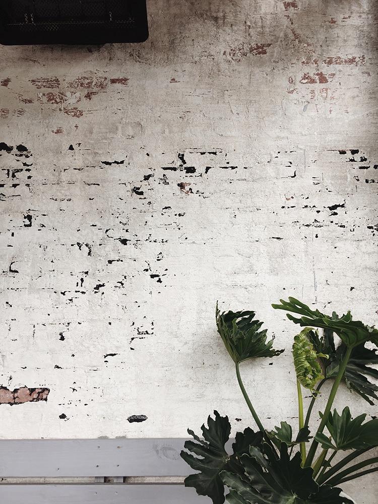 Bakestenen-muur-hoe-richt-ik-een-nieuwbouwhuis-in-stappenplan