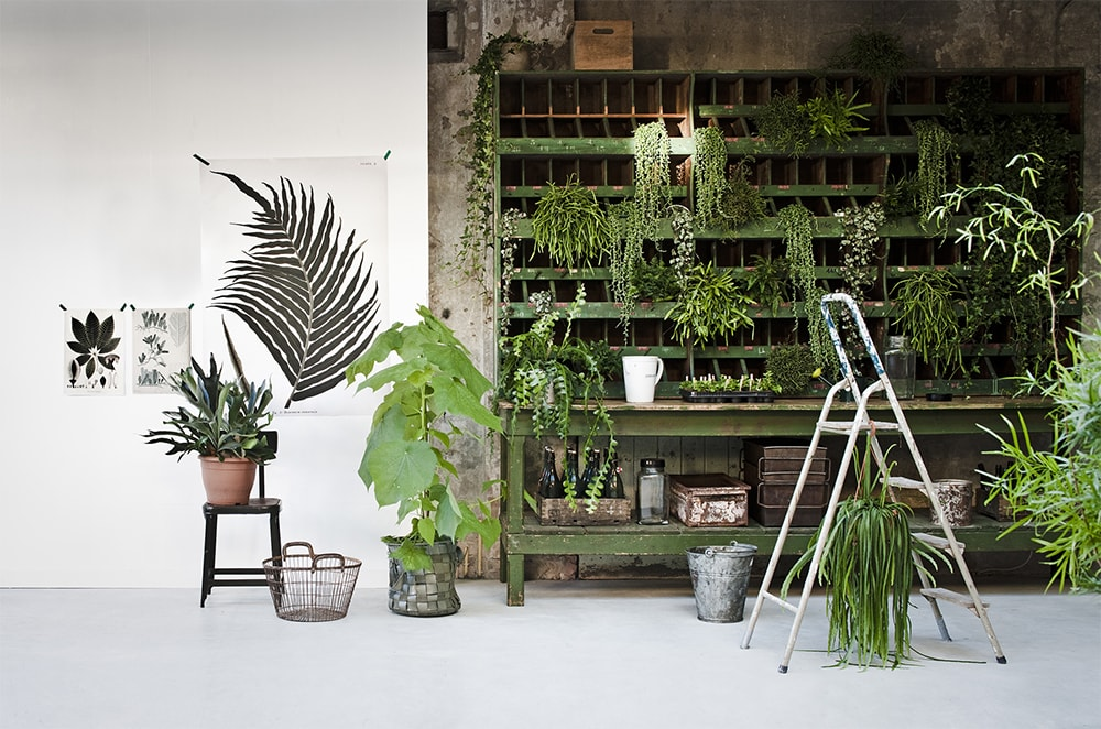Hoe-richt-ik-een-nieuwouwhuis-interieur-in-botanisch-industrieel-interieur