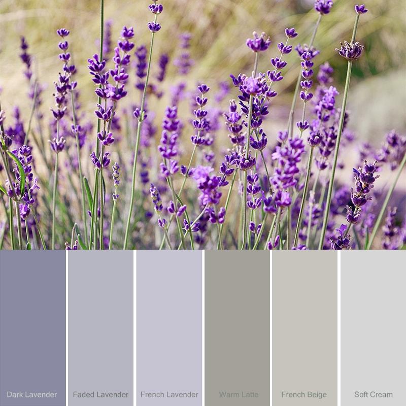 Kleur-paars-dark-lavender-paarse-krijtverf-combineren-klein