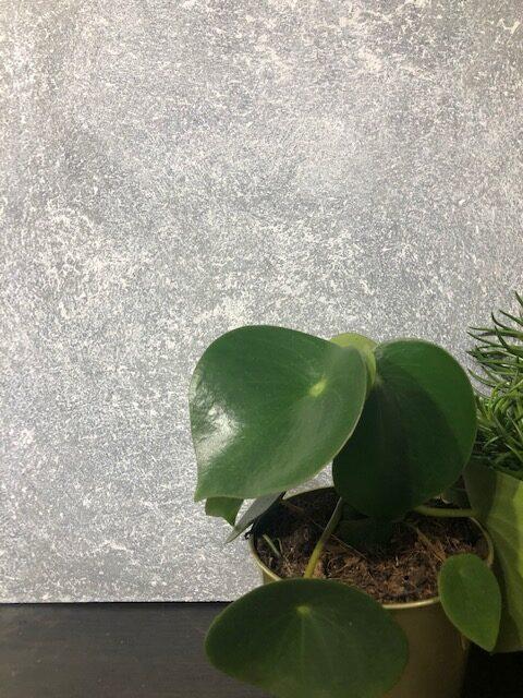 GRATIS handgeverfde sample Betonlook verf - Soft Grey -Primer Kiezel 5 x 5