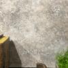 Proefflesje Betonlook verf-100 ml- Vintage Taupe